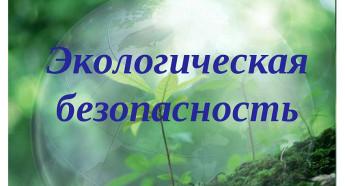 Экологическая безопасность, разоружение и военная деятельность государств