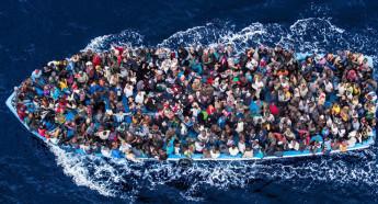 Экологические мигранты