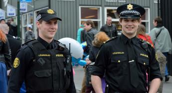 Полиция Исландии: общие положения